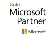 Microsoft Gold Partner Rochester NY